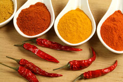 специи перцев chili Стоковые Фото