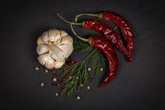 Специи, смешивание перца, перец chili, чеснок, укроп Стоковые Фото
