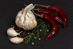 Специи, смешивание перца, перец chili, чеснок, укроп Стоковая Фотография RF