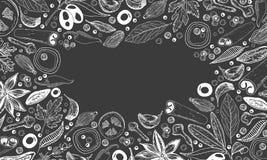 Специи, травы и предпосылка овощей иллюстрация штока