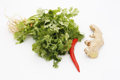 специи трав еды тайские Стоковое Изображение RF