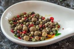 Специи для варить различные блюда и салат еда здоровая Стоковая Фотография