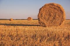 специфический сена поля bales румынское Стоковое Изображение