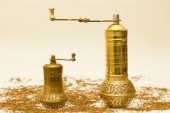 специя семян точильщиков тимона Стоковое Фото