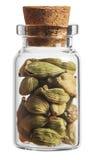 Специя Cardamon в маленькой бутылке изолированной на белизне стоковое фото