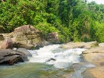 Спеша вода и река в национальном лесе El Yunque стоковое изображение rf