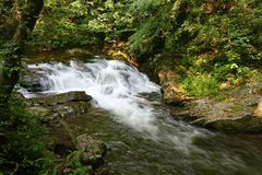 Спеша вода маленького реки стоковые изображения rf