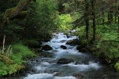 Спеша поток вниз с горы встает на сторону около Palmer, Аляски стоковые фото