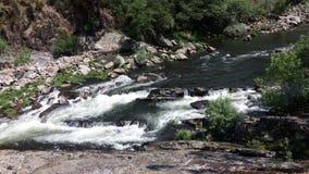 Спеша речная вода потока в севере Португалии Стоковое Изображение RF