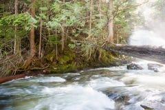 Спешя река Стоковые Изображения