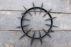Спиковой воротник наказания Стоковое Изображение RF