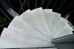 Спиральная лестница стали вентилятора Стоковая Фотография RF