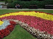 Спиральные цветки - лето Софии Стоковая Фотография RF