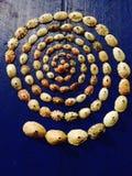 спираль Стоковые Фотографии RF