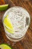 Спиртной джин с тоником стоковые фотографии rf