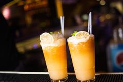 Спиртной коктеиль с цитрусом Стоковые Фотографии RF