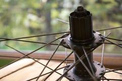 Спицы велосипеда для колеса Стоковая Фотография RF