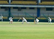 Спичка сверчка теста, зеленая дальняя часть поля, Индия стоковые фото