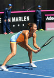Спичка Украина тенниса FedCup против Аргентины Стоковое Фото