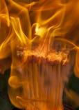 Спички в пачке на пожаре Стоковые Фото