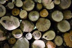 Спиленная деревянная текстура Стоковое Изображение RF
