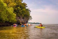 Сплавляющся на каяке в джунгли мангровы Krabi, Таиланд Стоковое Фото