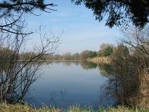 Спокойная вода Стоковые Изображения RF