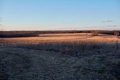 Спокойная естественная внешняя окружающая среда обрабатываемой земли Стоковые Фото