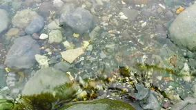 Спокойная и прозрачная вода видеоматериал