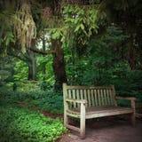Спокойная скамейка в парке установки в древесинах стоковое фото rf