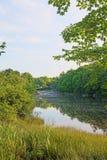Спокойная сцена реки Франкфурта Мейна Стоковые Изображения RF