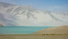 Спокойное белое озеро песк стоковое фото rf