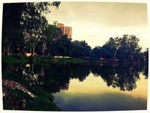 Спокойное озеро Стоковое Фото
