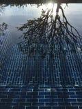 Спокойное отражение бассейна утра Стоковые Фото