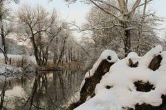 спокойное река бежать через туманные поля Стоковое Фото