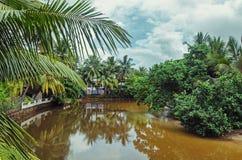 Спокойное река в деревне Стоковое Фото