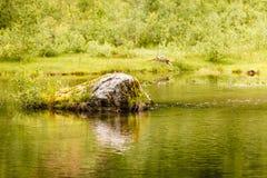 Спокойное река в лете, Норвегия Стоковое фото RF