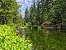 Спокойное река в национальном парке Yosemite Стоковое Фото