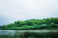 Спокойное река в дождливом дне Стоковое фото RF