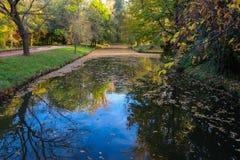 Спокойное река в осени Стоковое Изображение