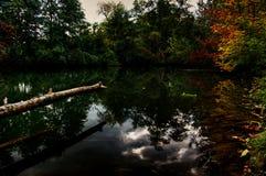 Спокойное река в предстоящей осени Стоковая Фотография RF