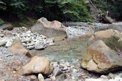 Спокойное река горы в лете Стоковое Изображение