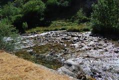 Спокойное река горы : стоковые фотографии rf