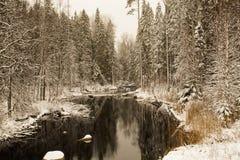 Спокойное река леса после снежностей Стоковое Изображение RF
