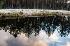 Спокойное река на сельской местности Стоковое Изображение RF