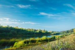 Спокойное река с лесом Стоковые Изображения