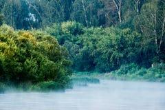 Спокойное река с лесом Стоковая Фотография RF