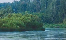 Спокойное река с лесом Стоковое фото RF