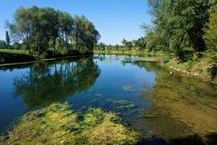 Спокойное река Krka в na Krki Kostanjevica Стоковое Фото