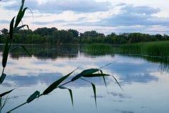 Спокойное тихое река в утре на зоре Стоковая Фотография RF